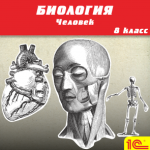 Биология. Человек, 8 класс, Драгомилов А.Г., Маш Р.Д.