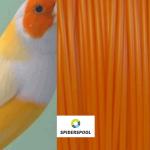 PLA оранжевая амадина гульда (Spiderspool)