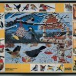 Птицы зимой. Магнитный плакат