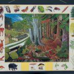 Природное сообщество леса. Магнитный плакат